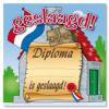 Huldeschild diploma geslaagd kopen